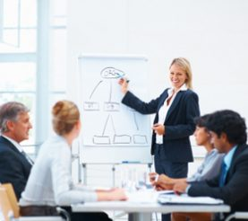 Portrait of a young business woman explaining during presentation